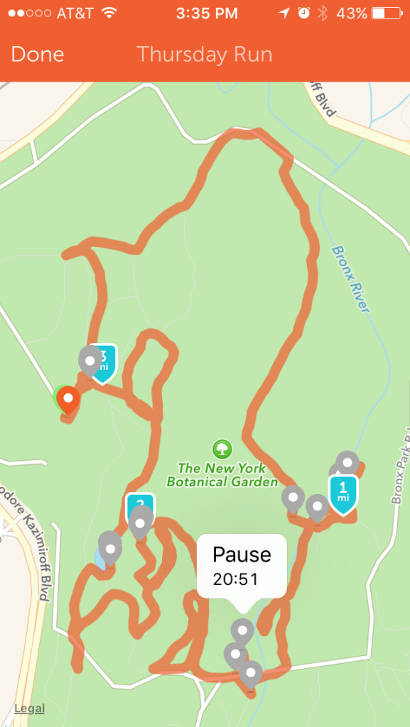 My trail through NYBG via my Runkeeper App.