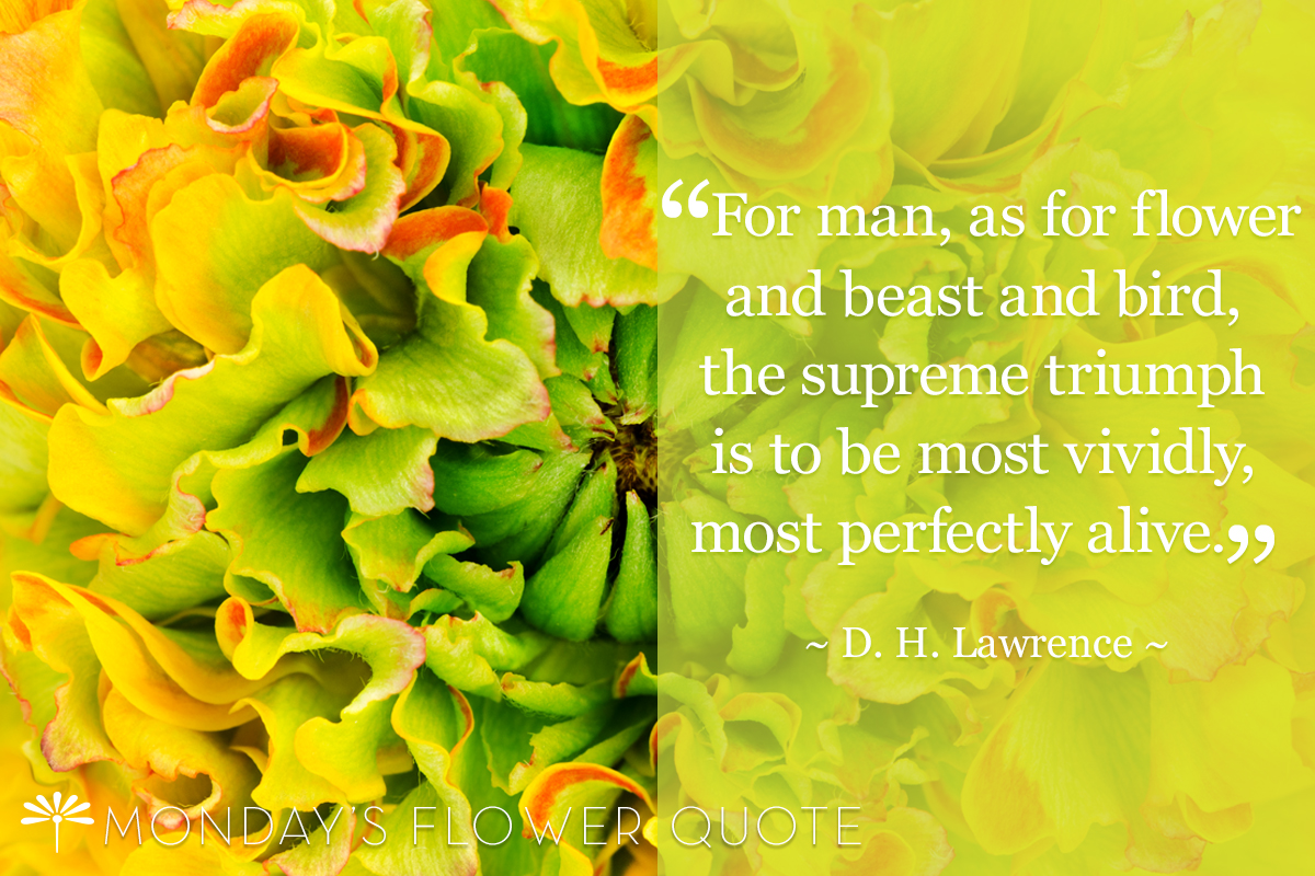 For man as for flower | Flower Quote