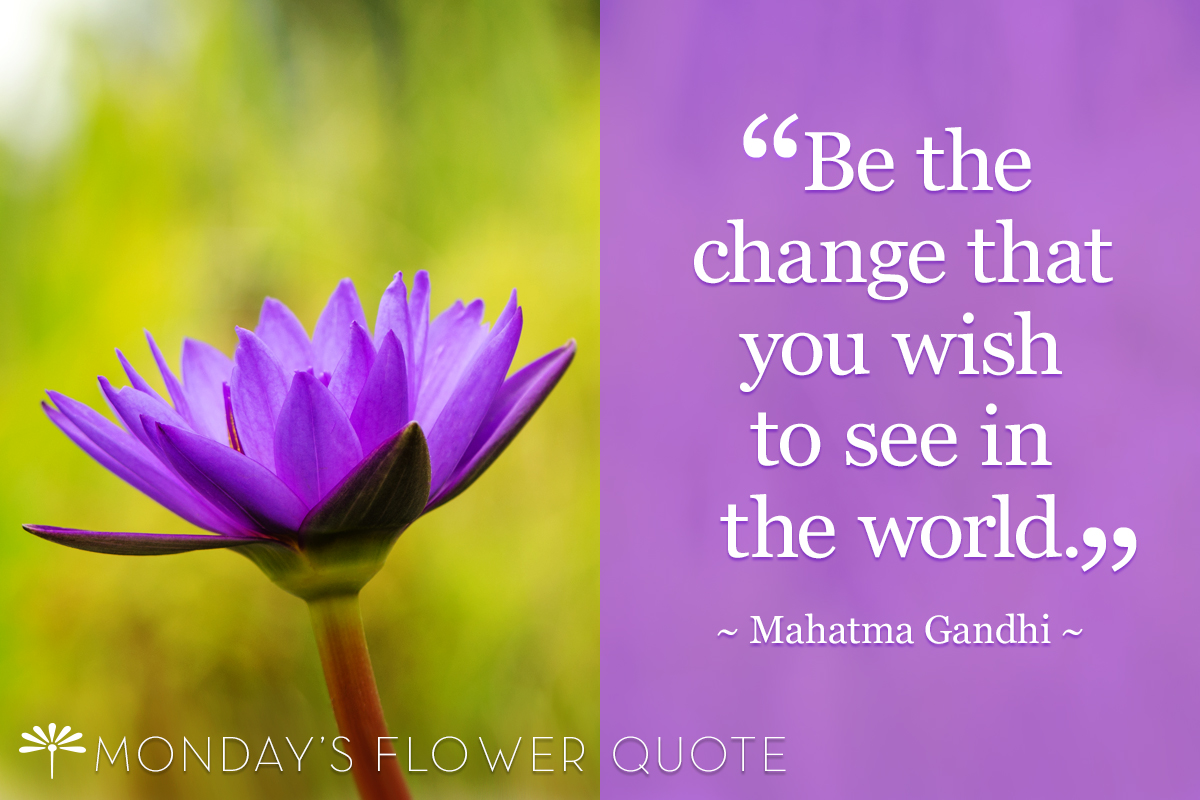 Be the Change | Monday's Flower Quote