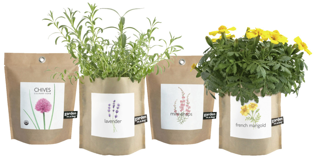 You Could Win A 'Garden In A Bag' - Become a Floating Petals Member