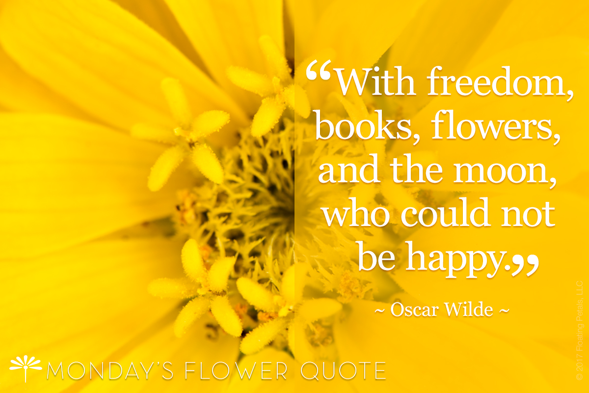 Freedom books flowers floating petals monday 39 s flower quote - Flowers that mean freedom ...