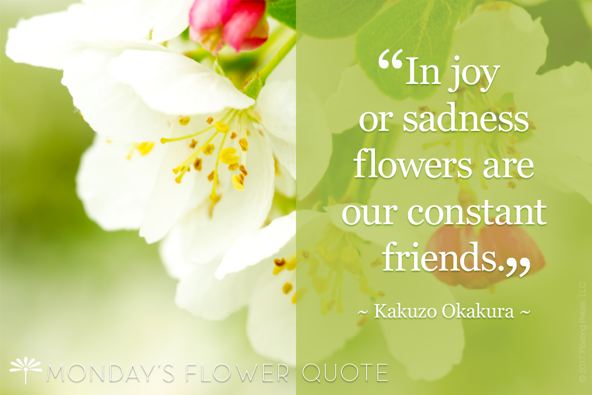 Flower Quote | In Joy Or Sadness