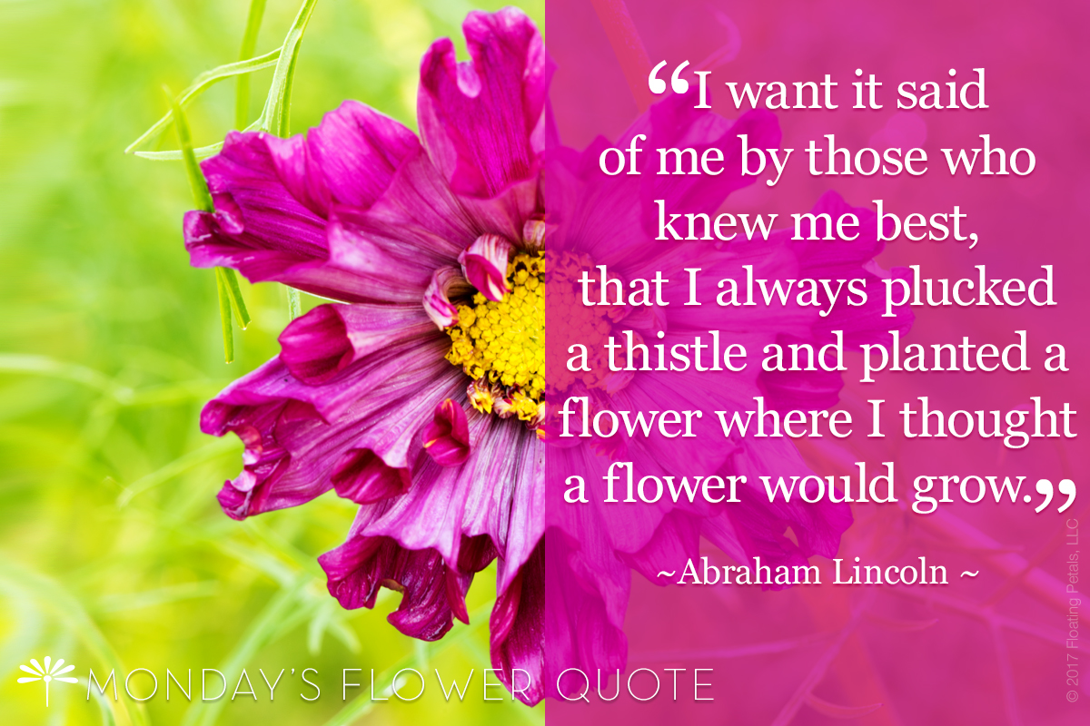 FLOWER QUOTE: I WANT IT SAID OF ME