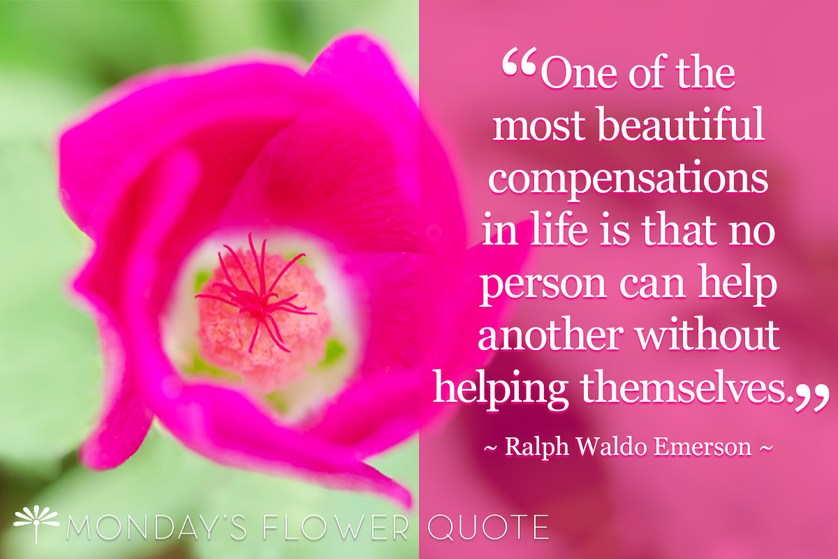One of the most beautiful compensations in life - Roger Emerson