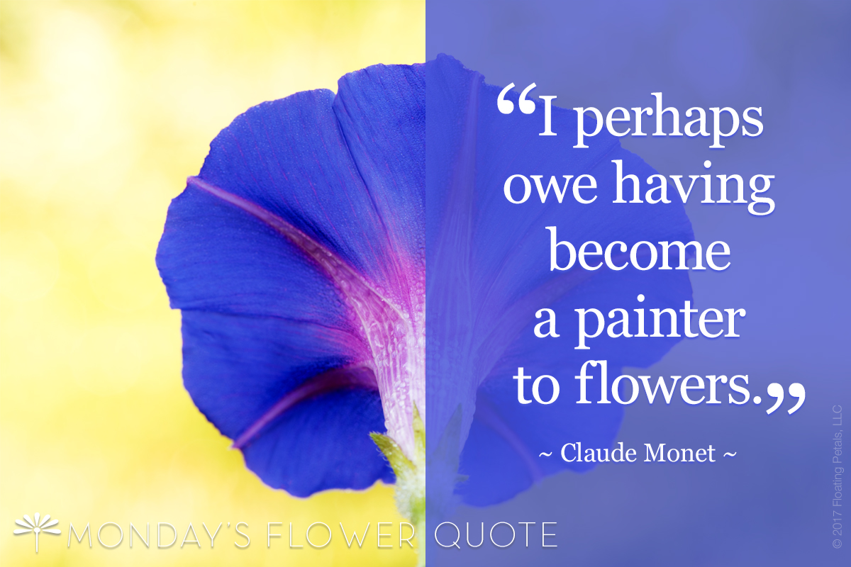I perhaps owe having become a painter to flowers - Claude Monet