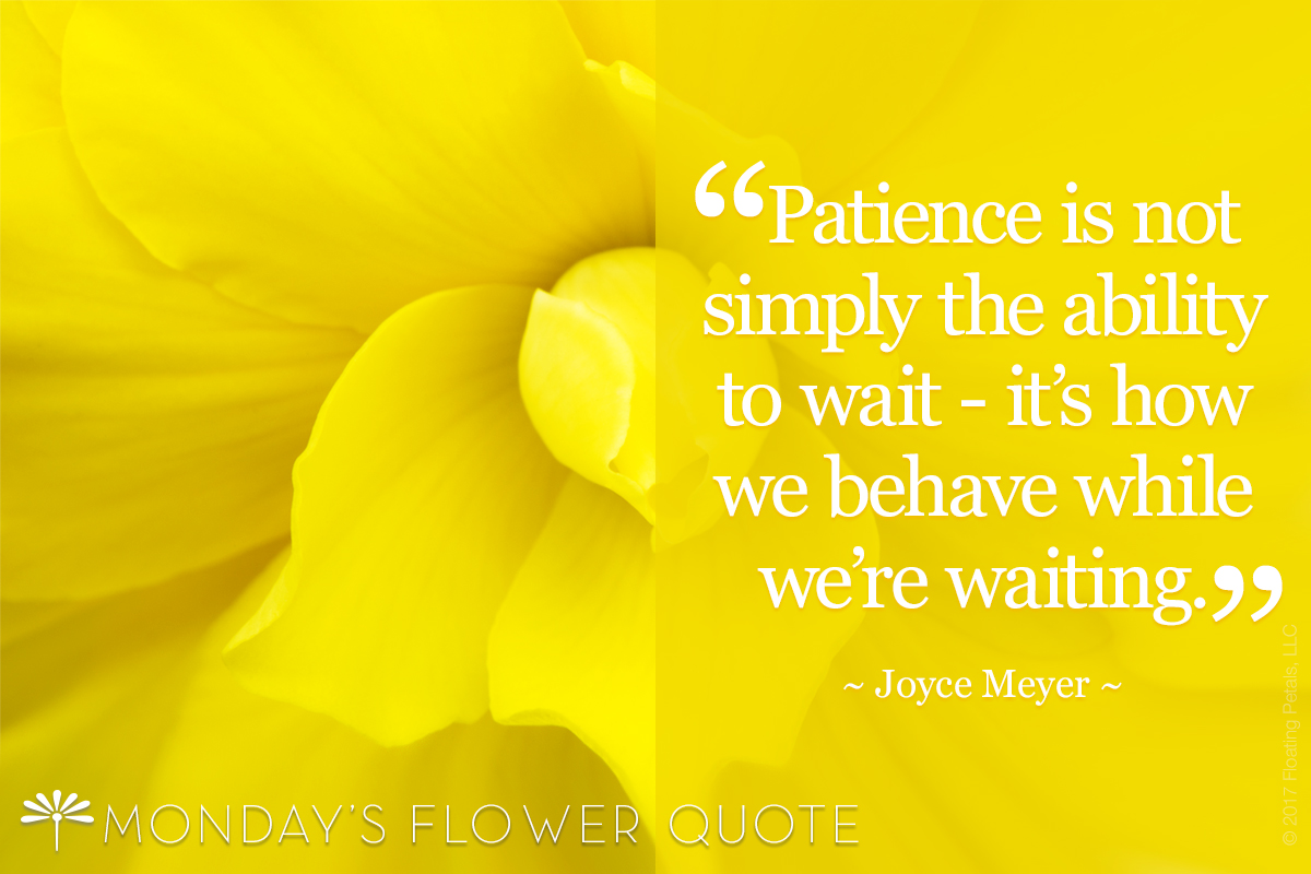 Patience Is Not Simply The Ability To Wait