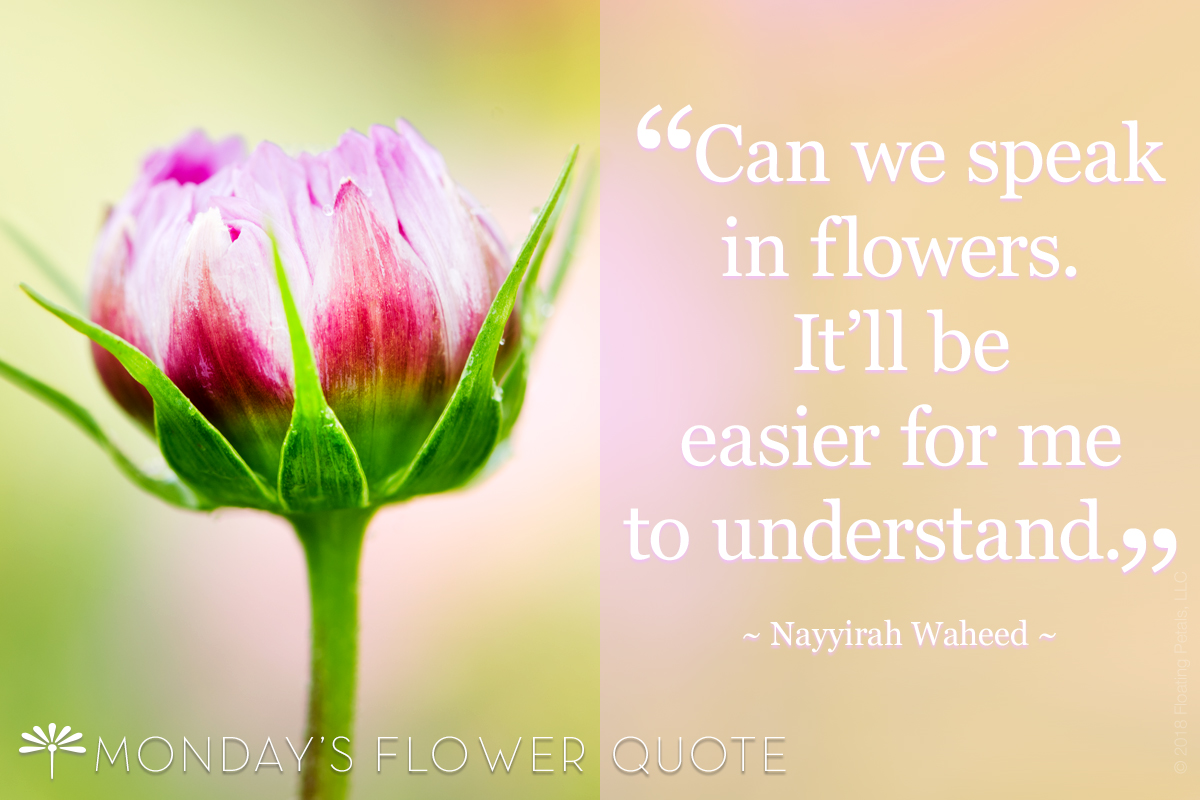 Flower Quote: Can We Speak In Flowers