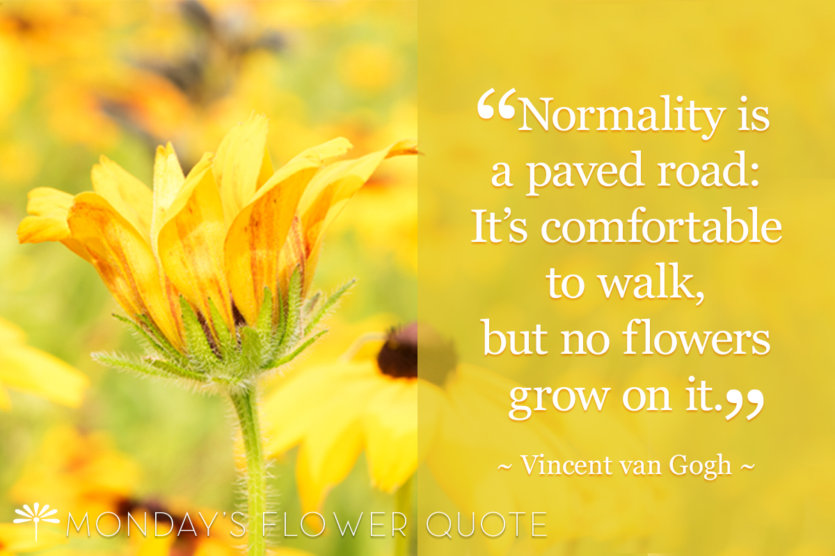 Normality Is A Paved Road Vincent Van Gogh Floating Petals