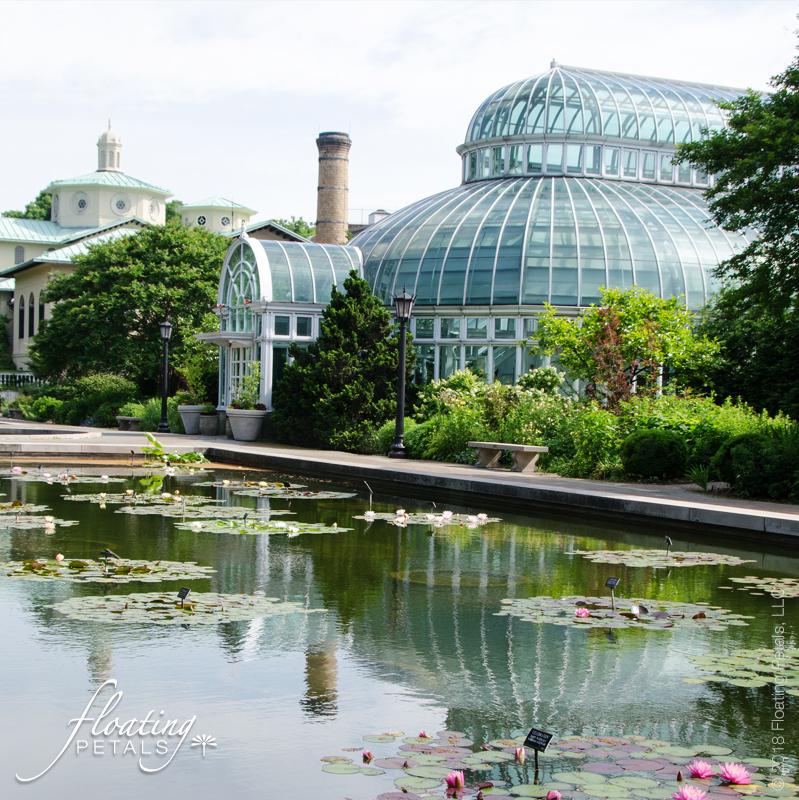 Botanical Garden or Arboretum