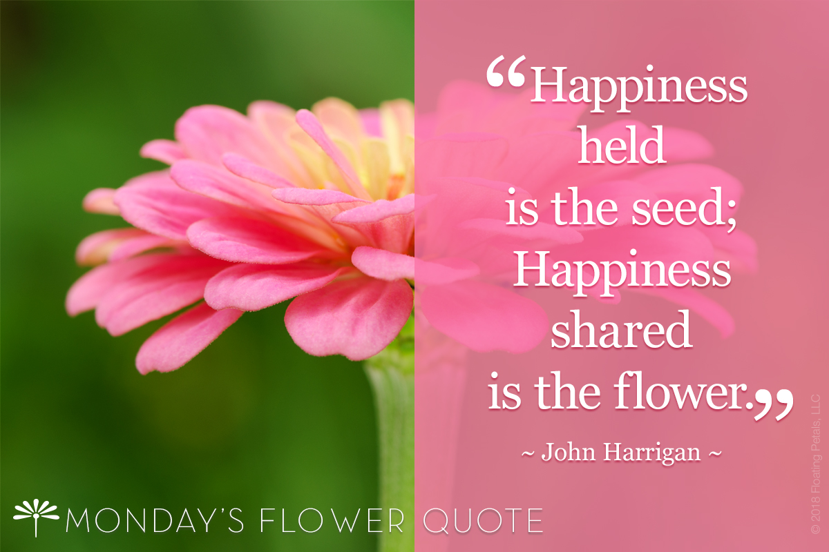 Flower Quote: Happiness Held Is The Seed