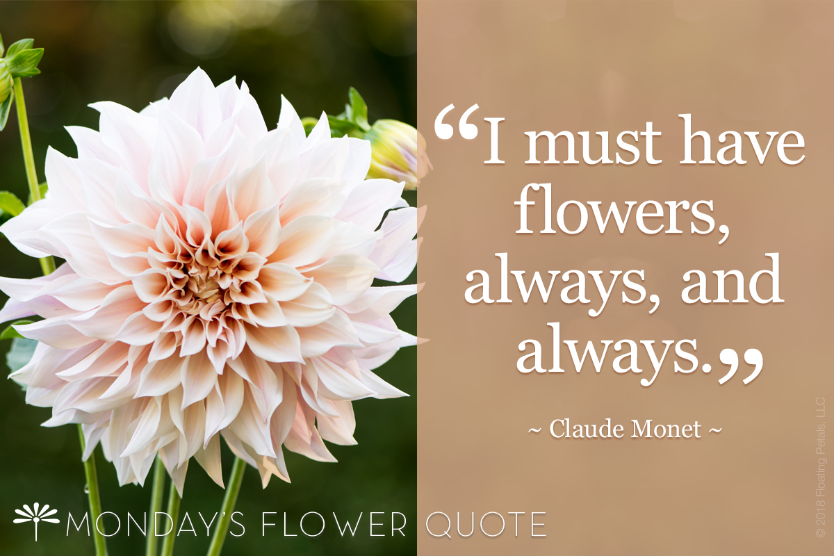 Flower Quote: I Must Have Flowers