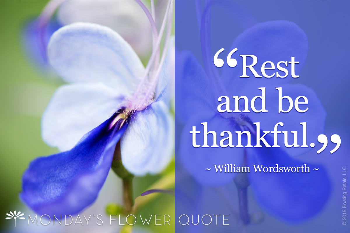 Rest and Be Thankful - William Wordsworth