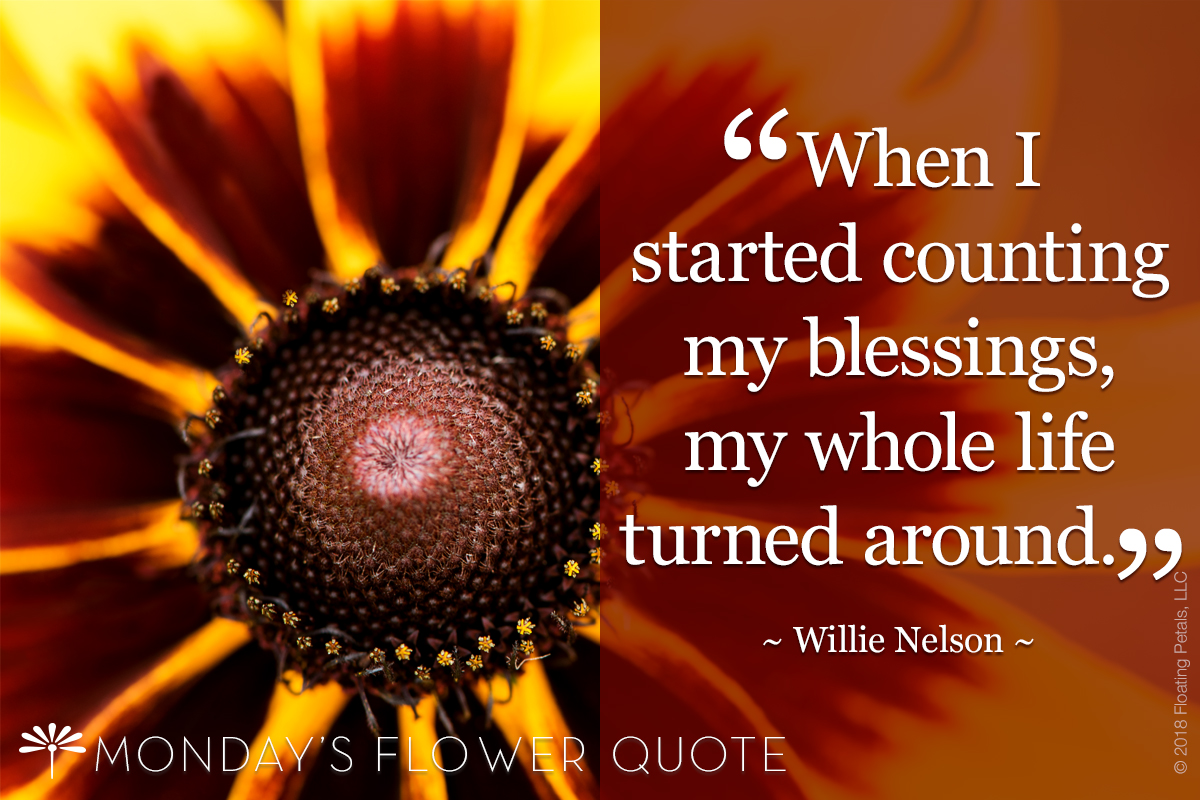 Flower Quote | Willie Nelson