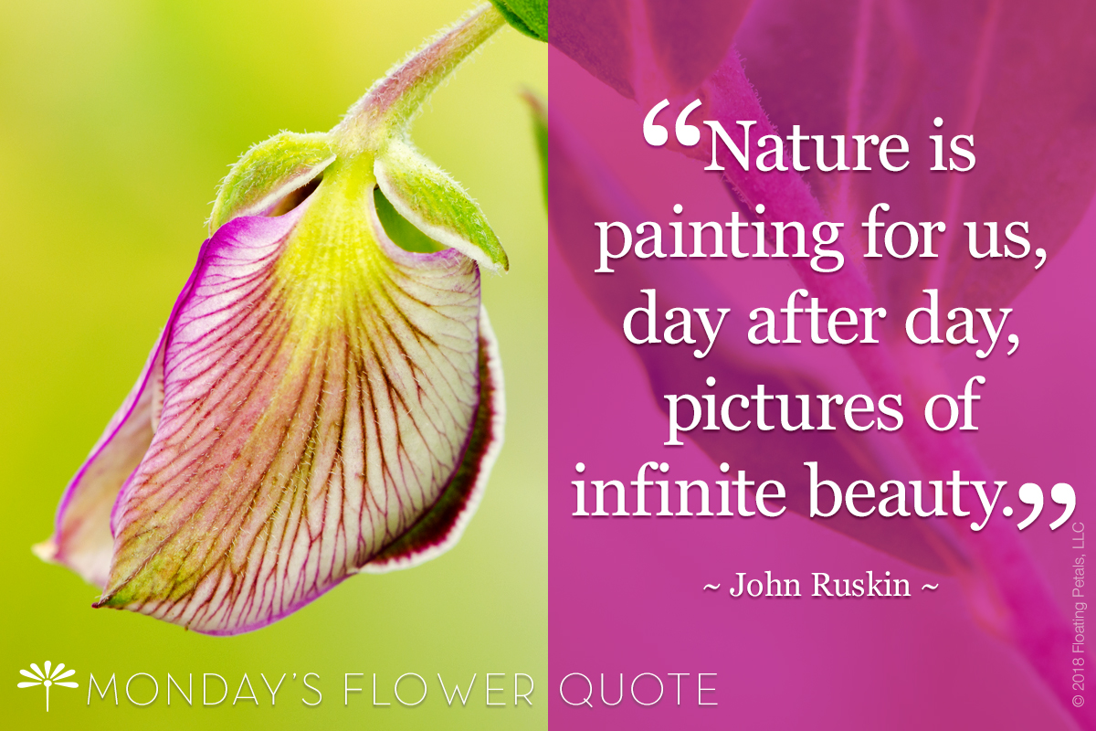 Nature Is Painting For Us | John Ruskin