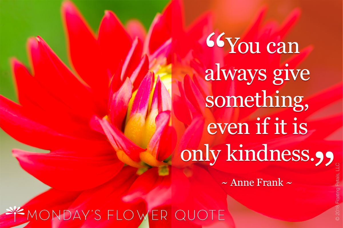 Flower Quote | Anne Frank