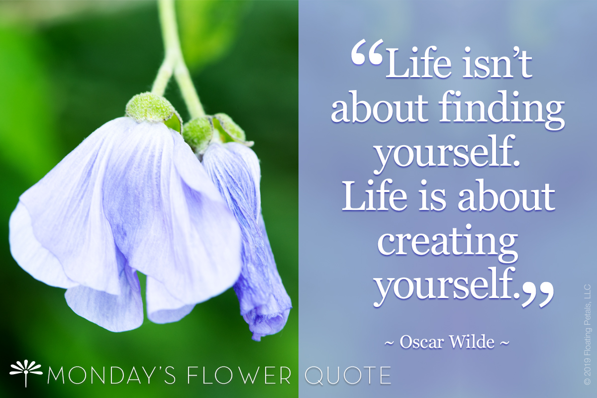 Flower Quote: Life Isn't About Finding Yourself
