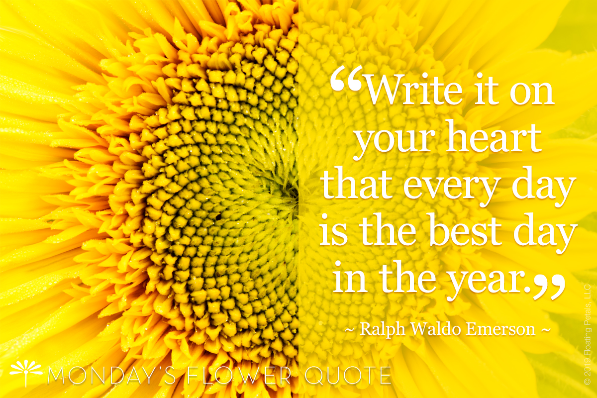 Flower Quote: Write It On Your Heart