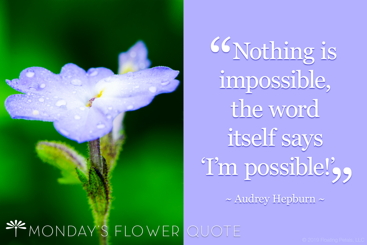 Nothing Is Impossible | Audrey Hepburn